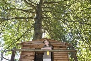 Giant trees with wooden treehouses are iconic play structures for adventurous kids.