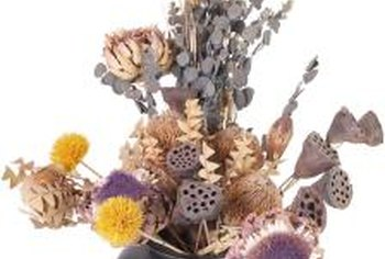 Strawflowers add color to arrangements of dried pods and seed heads.