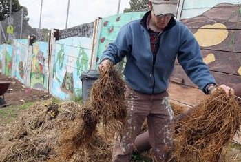 Proper compost mixtures will smell almost like soil rather than exuding noxious fumes.
