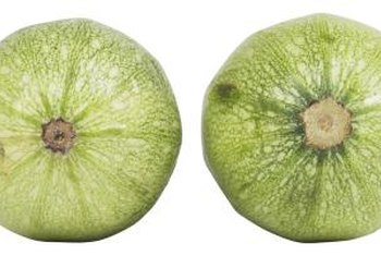 Apple cucumbers resemble the shape of an apple.