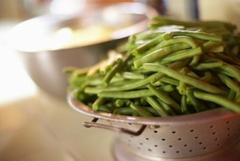 With full sunlight and proper watering, your pole beans will continue to grow throughout the warm months.