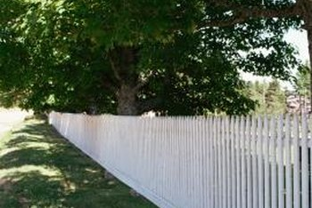 Painting A North Facing Fence White Provides More Light For Plants