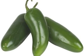 Jalapenos will grow indoors all year.