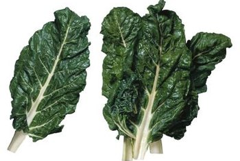 Grow a healthy crop of Swiss chard greens with minimal effort.