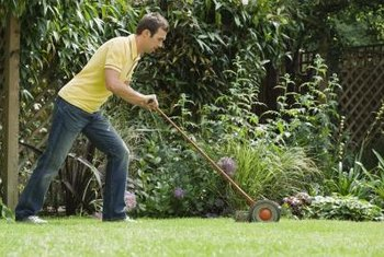 Keep your lawn lush by reseeding bare spots.