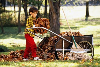 Raking lets your lawn breathe.