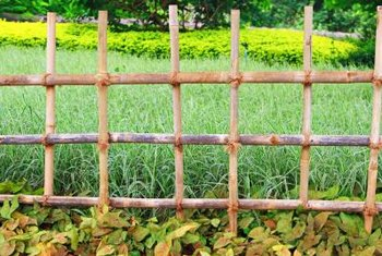 Attirant To Keep Your Dog From Destroying Your Garden, Sometimes You Need More Than  A Fence