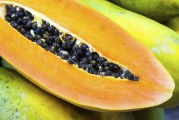 Papaya can be picked green or fully ripened.