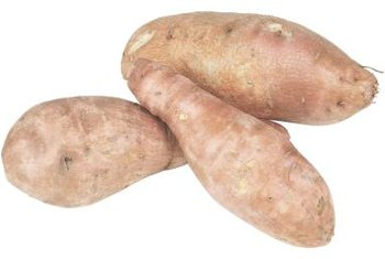 Edible sweet potatoes come from vines that produce trumpet-shaped flowers.