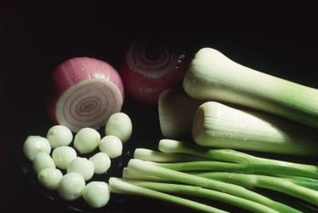 Cultivars of Allium cepa -- garden onions -- are common as food crops.