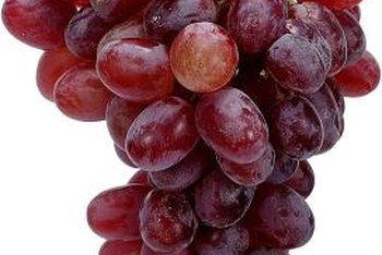 Juicy grapes can be grown in mostly shade with some strategic location planting.