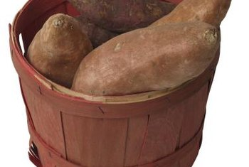 Yams require a large container to successfully produce tubers.