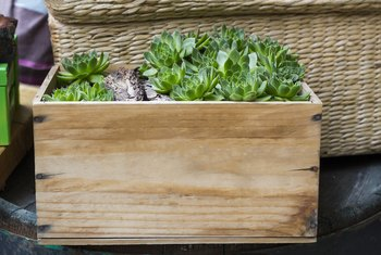 How to Calculate How Much Soil Is Needed in a Raised Bed Planter Box