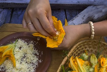 How to Pick Zucchini Flowers