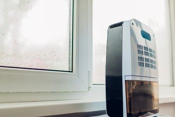 Where Do You Place a Dehumidifier for the Best Results?