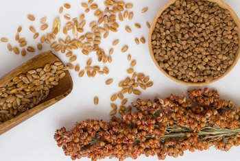 The Benefits of Sorghum