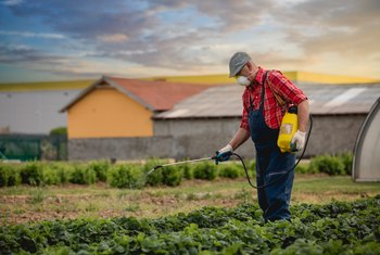 What Is the Ratio of Roundup Weed Killer to Water? | Home Guides