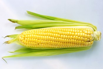 The Good Vs. Bad in Genetically-Modified Foods