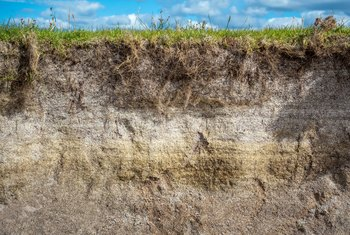 Characteristics of Sandy Loam Soil
