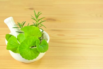 What Are the Benefits of Centella Asiatica?
