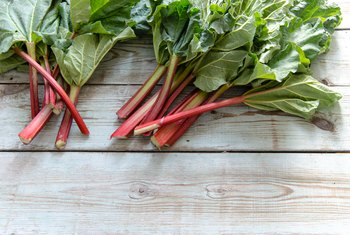 How to Keep Rhubarb Fresh