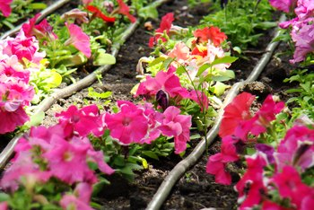 How to Plant Flowers With Landscape Fabric for Weed Protection