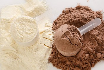 Can Babies Be Fed Whey Protein?