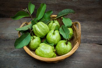 What Makes the Guava So Nutritious?