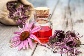 What Are the Health Benefits of Lysine and Echinacea?