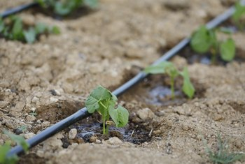 The Advantages of Irrigation Systems
