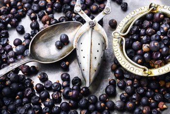Medicinal Benefits of Juniper Berries