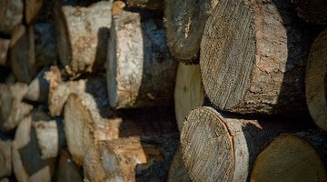 Definition of Seasoned Firewood
