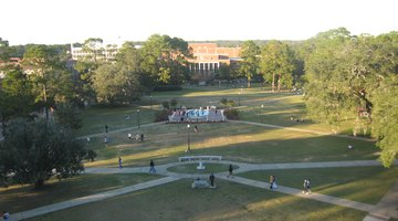 Landis Green is located in the center of the main campus
