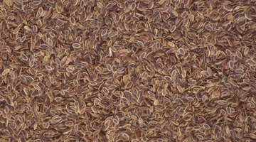 ¿Las semillas de linaza se comen crudas?