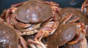 ¿La carne de cangrejo es alta en colesterol?