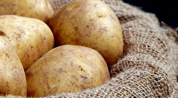 Science Experiments on the Osmosis of a Potato