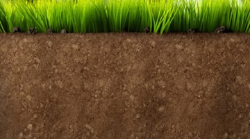 Soil volume is the length times the width times the depth of a specific area of soil.