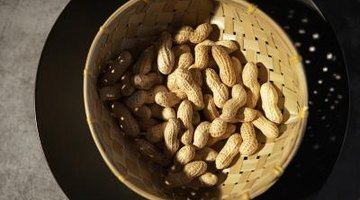 How to Make Bird and Squirrel Food
