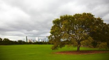 Austin, Texas, has a humid climate.