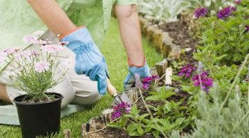 Flower beds take attention away from the flat features of a ranch style house.