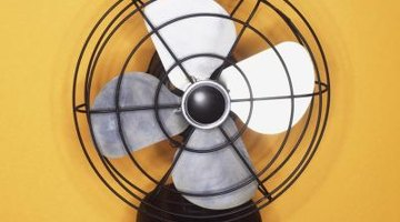 Increase airflow with a fan to dry carpet faster.