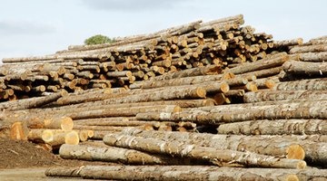 Partly processed lumber