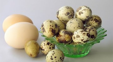 Eggs are low in purines and high in proteins.