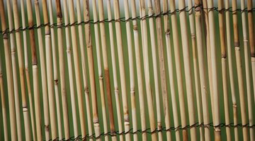 Bamboo fencing can last for decades.