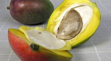 Qué usar para la alergia a los mangos