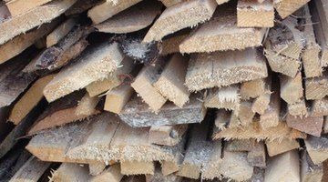 Termites are sometimes found in timber retaining walls.