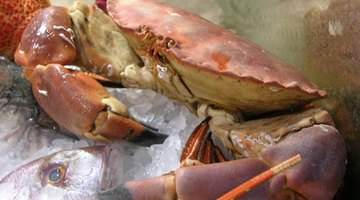 What Are the Dangers of Eating Spoiled Crab Legs?