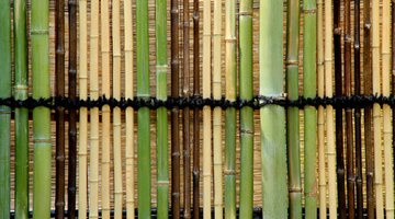 A fence can be made of reed and bamboo.