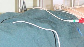 Función endocrina del riñón humano