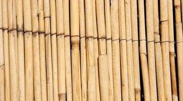 Reed fencing is an economic alternative to bamboo.